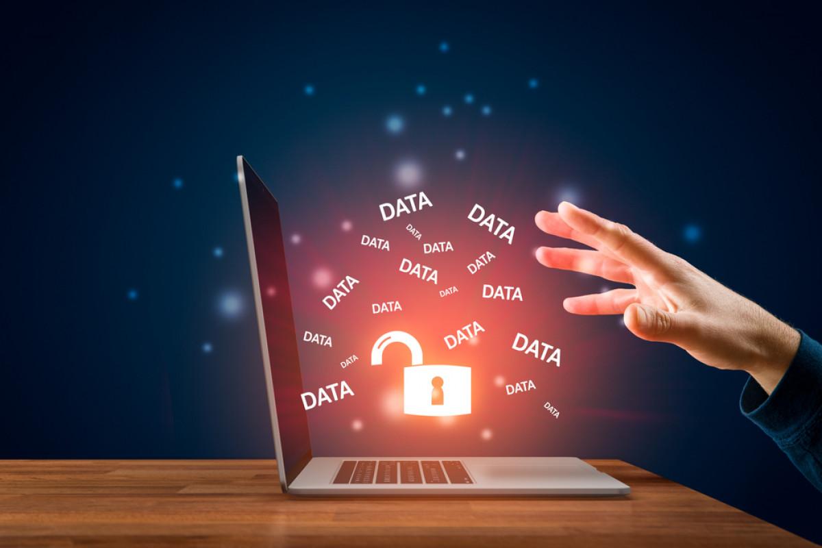Prahara Kebocoran Data, Kurangnya Perlindungan atau Kelalaian Pribadi?